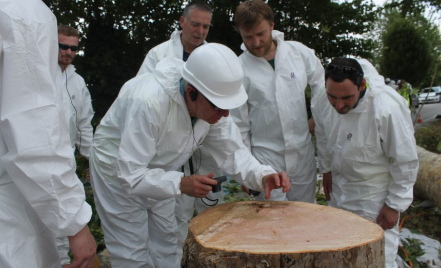 Developing a partnership model for tree health and resilience