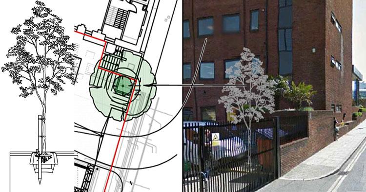 Tree Planting Design