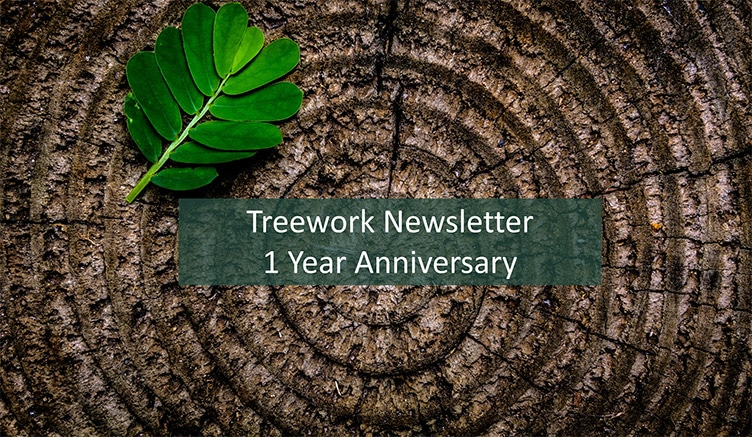 1 Year Anniversary Of The Treework Newsletter
