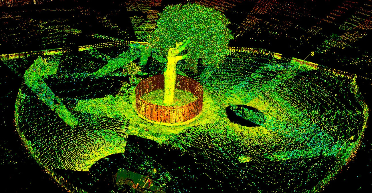 3d Model Tree Image