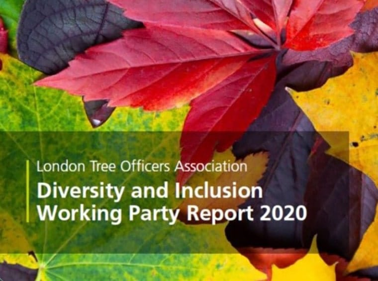 Diversity & Inclusion Working Party Report
