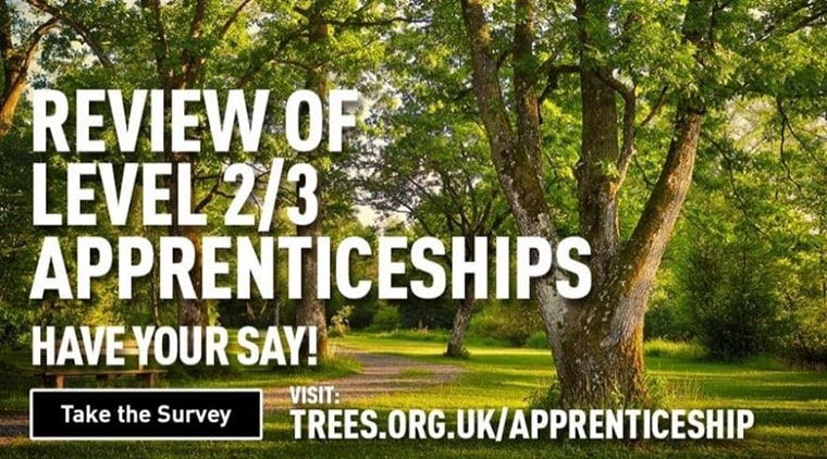 Review Of Arboriculture, Forestry And Horticulture Or Landscape Apprenticeships Have Your Say!